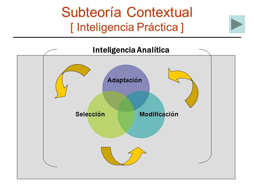 Subteoría Contextual [ Inteligencia Práctica ] Adaptación SelecciónModificación Inteligencia Analítica