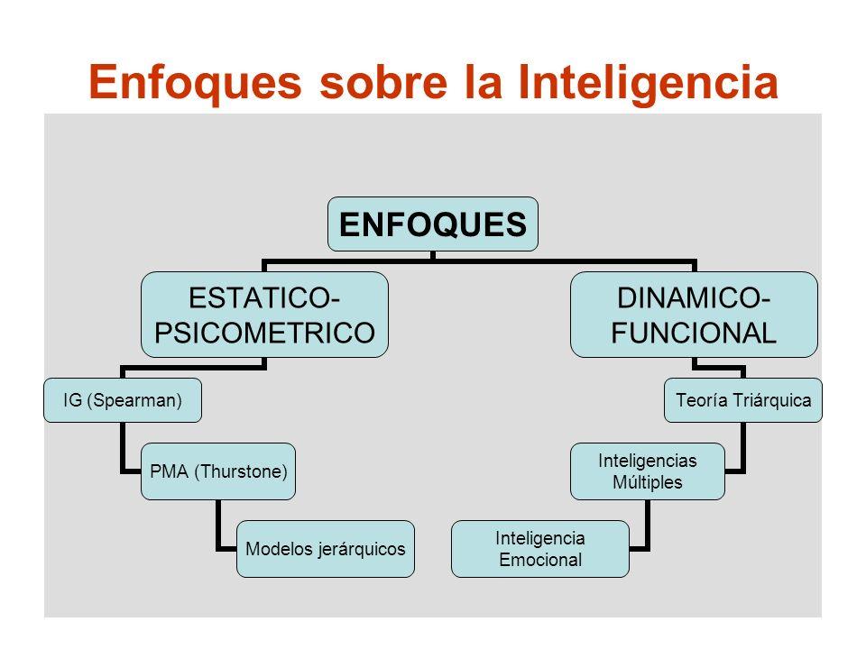 Enfoques sobre la Inteligencia ENFOQUES ESTATICO- PSICOMETRICO IG (Spearman) PMA (Thurstone) Modelos jerárquicos DINAMICO- FUNCIONAL Teoría Triárquica