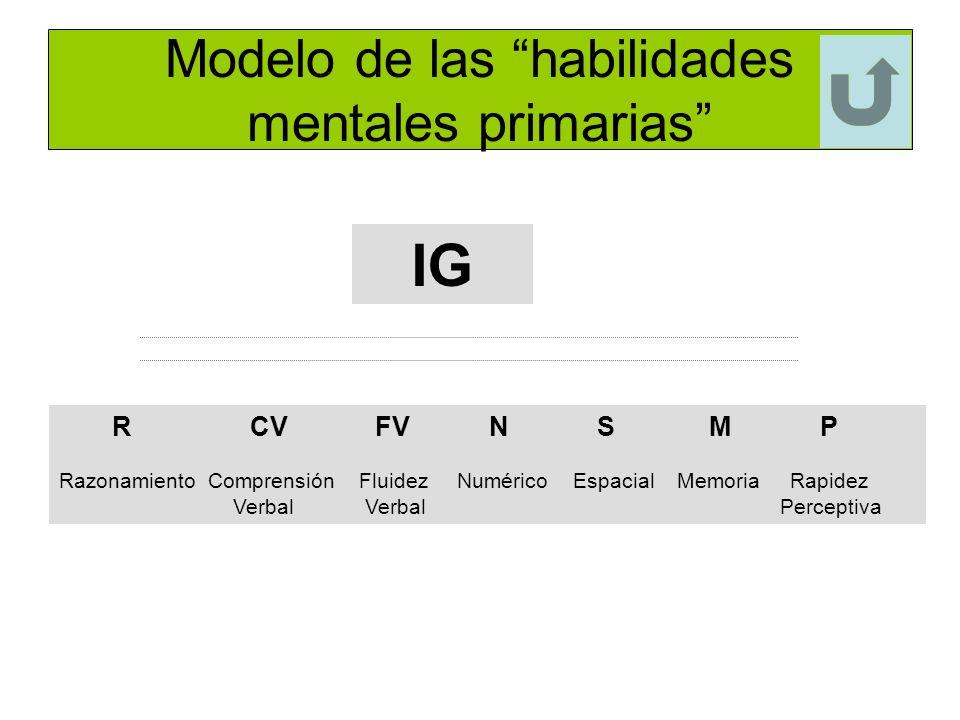 Modelo de las habilidades mentales primarias IG R CV FV N S M P Razonamiento Comprensión Fluidez Numérico Espacial Memoria Rapidez Verbal Verbal Perce