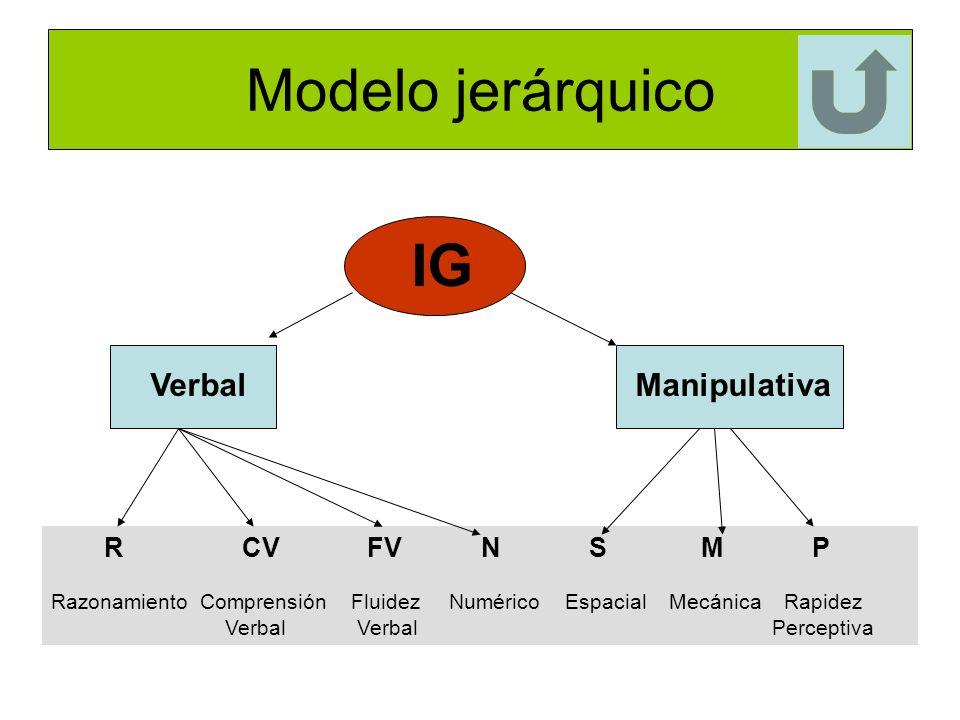 Modelo jerárquico IG R CV FV N S M P Razonamiento Comprensión Fluidez Numérico Espacial Mecánica Rapidez Verbal Verbal Perceptiva Verbal Manipulativa