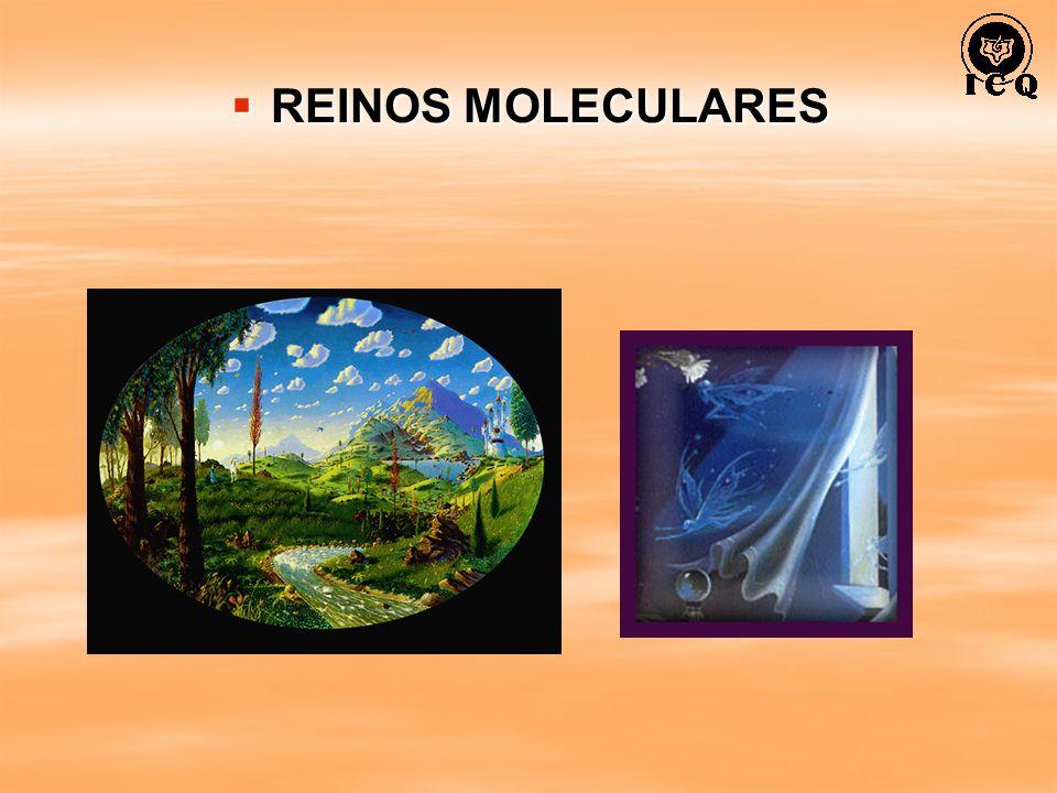 REINOS MOLECULARES