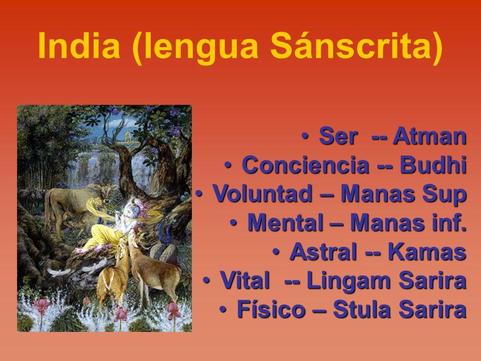 India (lengua Sánscrita) Ser -- AtmanSer -- Atman Conciencia -- BudhiConciencia -- Budhi Voluntad – Manas SupVoluntad – Manas Sup Mental – Manas inf.M