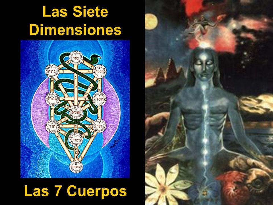 Las Siete Dimensiones Las 7 Cuerpos