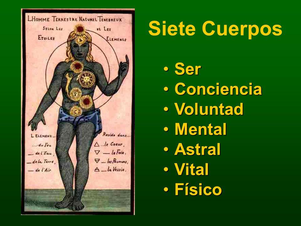 Siete Cuerpos SerSer ConcienciaConciencia VoluntadVoluntad MentalMental AstralAstral VitalVital FísicoFísico