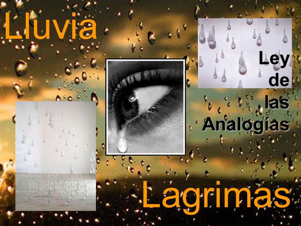 Lluvia Lagrimas Ley de las Analogías