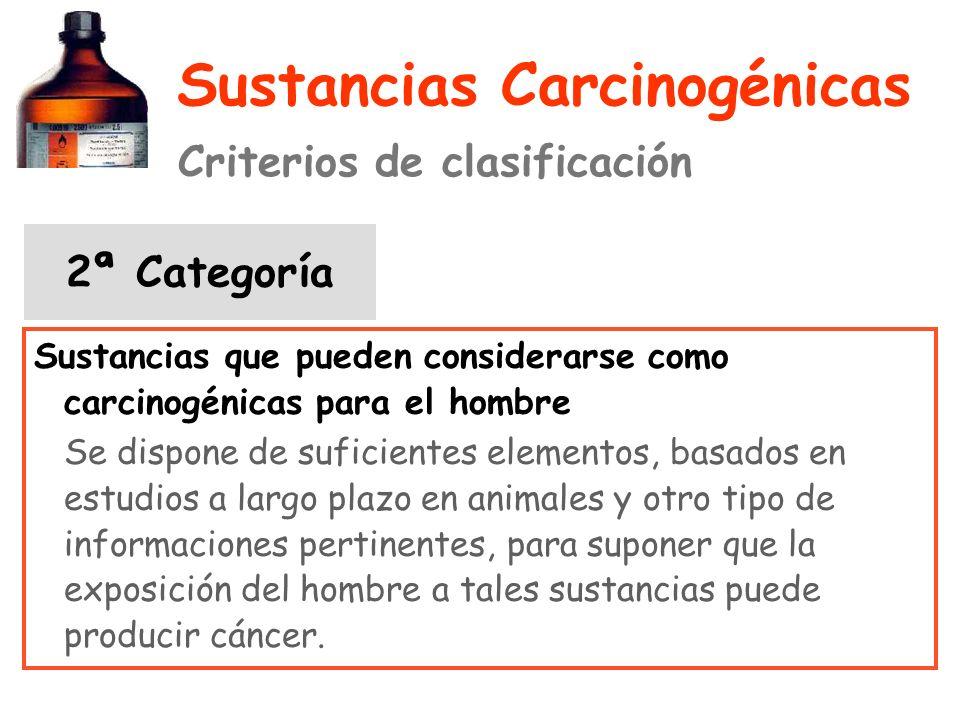 Sustancias Carcinogénicas Criterios de clasificación 2ª Categoría Sustancias que pueden considerarse como carcinogénicas para el hombre Se dispone de suficientes elementos, basados en estudios a largo plazo en animales y otro tipo de informaciones pertinentes, para suponer que la exposición del hombre a tales sustancias puede producir cáncer.