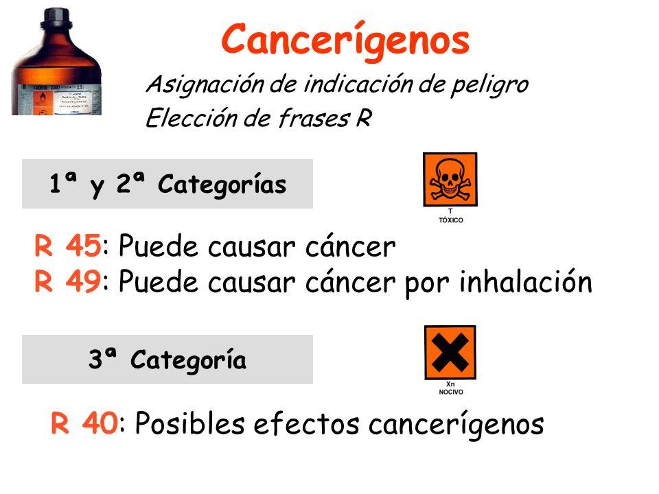 Cancerígenos Asignación de indicación de peligro Elección de frases R 1ª y 2ª Categorías R 45: Puede causar cáncer R 49: Puede causar cáncer por inhalación 3ª Categoría R 40: Posibles efectos cancerígenos