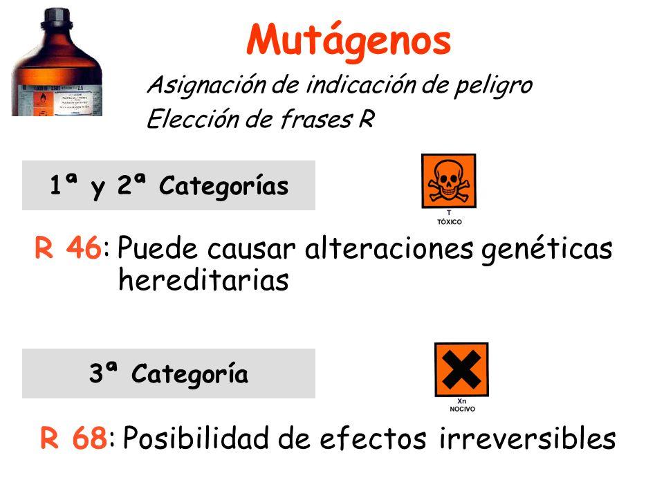Mutágenos Asignación de indicación de peligro Elección de frases R 1ª y 2ª Categorías R 46:Puede causar alteraciones genéticas hereditarias 3ª Categoría R 68:Posibilidad de efectos irreversibles