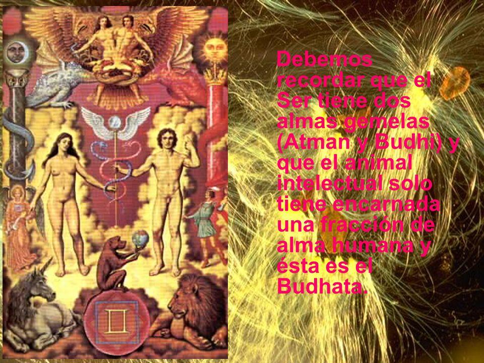 Géminis La constelación de Géminis se relaciona con las almas gemelas y por ello, todos los cambios en la naturaleza y el hombre se procesan de acuerd