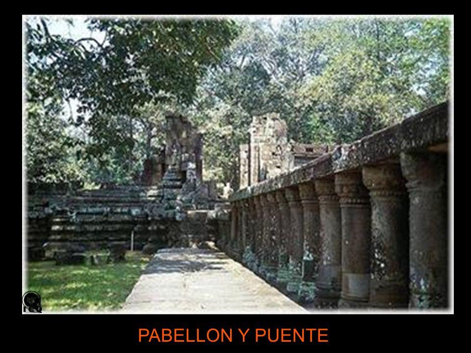 PABELLON Y PUENTE