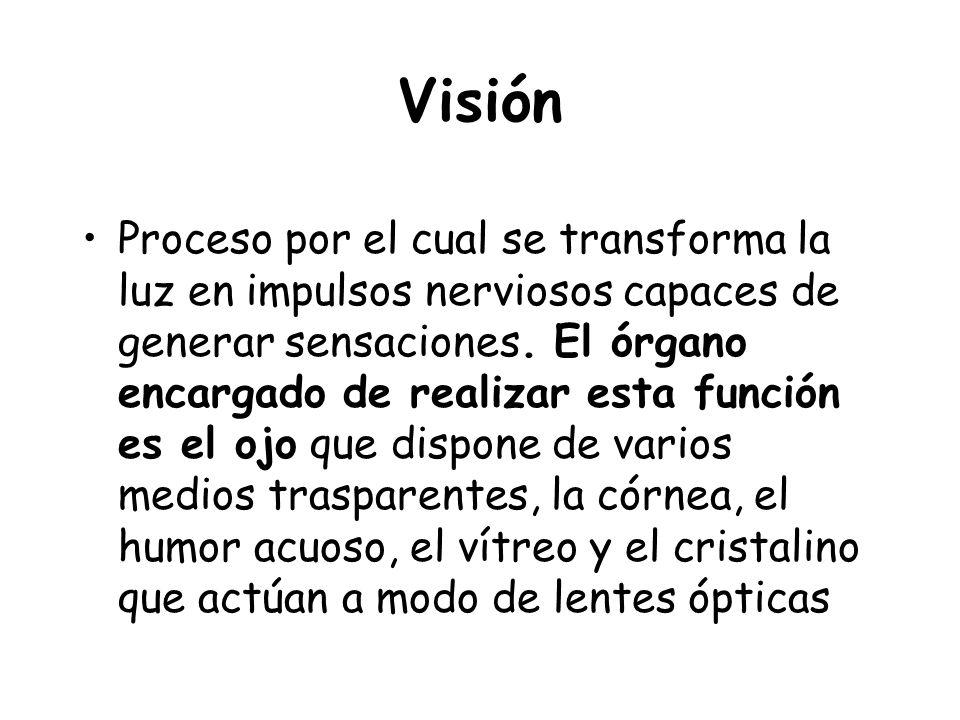 Visión Proceso por el cual se transforma la luz en impulsos nerviosos capaces de generar sensaciones. El órgano encargado de realizar esta función es