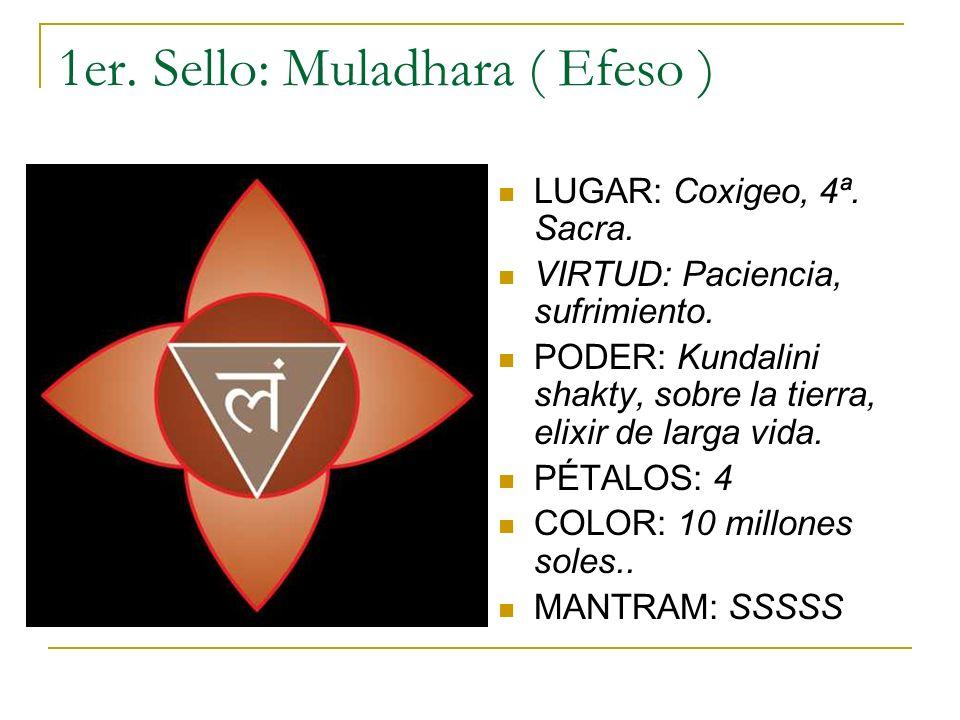 1er. Sello: Muladhara ( Efeso ) LUGAR: Coxigeo, 4ª. Sacra. VIRTUD: Paciencia, sufrimiento. PODER: Kundalini shakty, sobre la tierra, elixir de larga v
