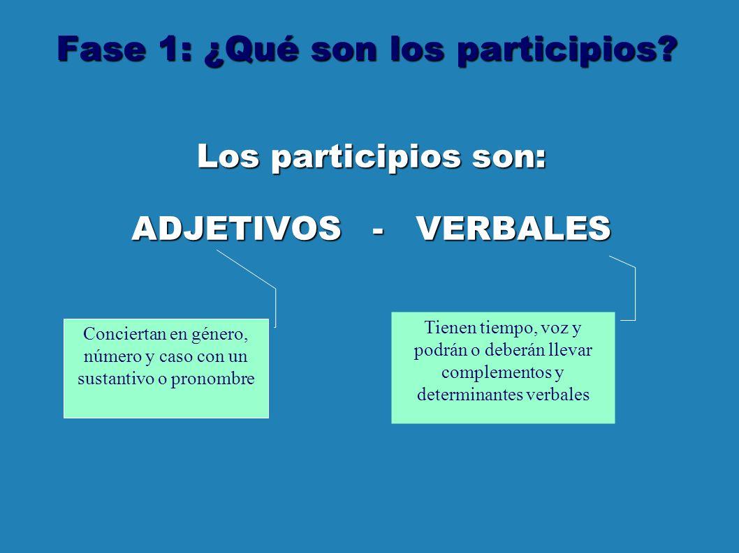 Fase 1: ¿Qué son los participios.