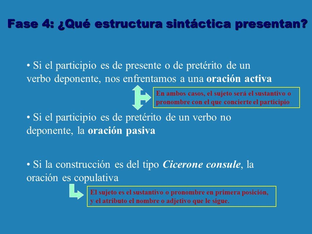 Fase 4: ¿Qué estructura sintáctica presentan.