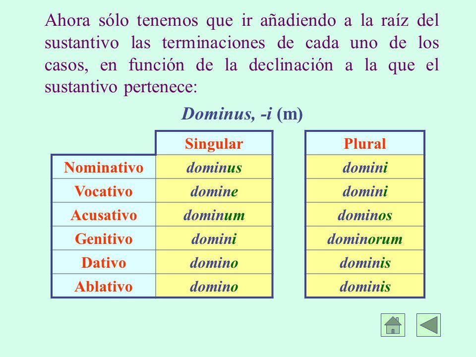 Ahora sólo tenemos que ir añadiendo a la raíz del sustantivo las terminaciones de cada uno de los casos, en función de la declinación a la que el sustantivo pertenece: Dominus, -i (m) SingularPlural Nominativodominusdomini Vocativodominedomini Acusativodominumdominos Genitivodominidominorum Dativodominodominis Ablativodominodominis