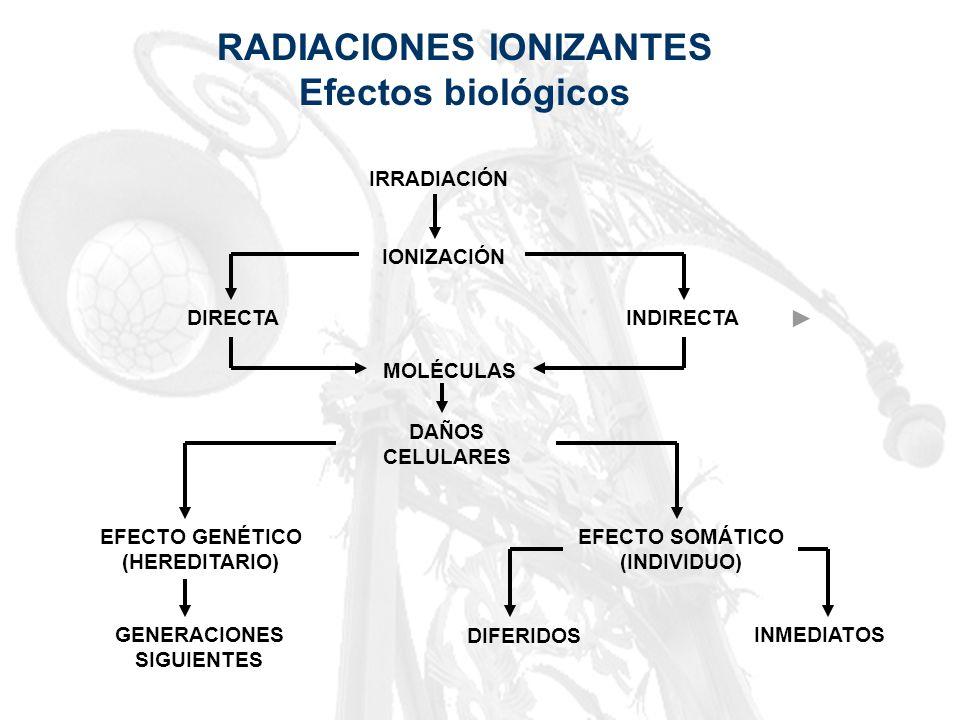 RADIACIONES IONIZANTES Efectos biológicos IRRADIACIÓN IONIZACIÓN DIRECTAINDIRECTA MOLÉCULAS DAÑOS CELULARES EFECTO GENÉTICO (HEREDITARIO) EFECTO SOMÁT