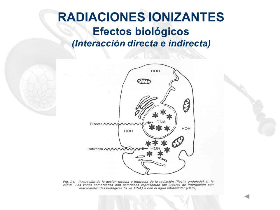 RADIACIONES IONIZANTES Efectos biológicos (Interacción directa e indirecta)