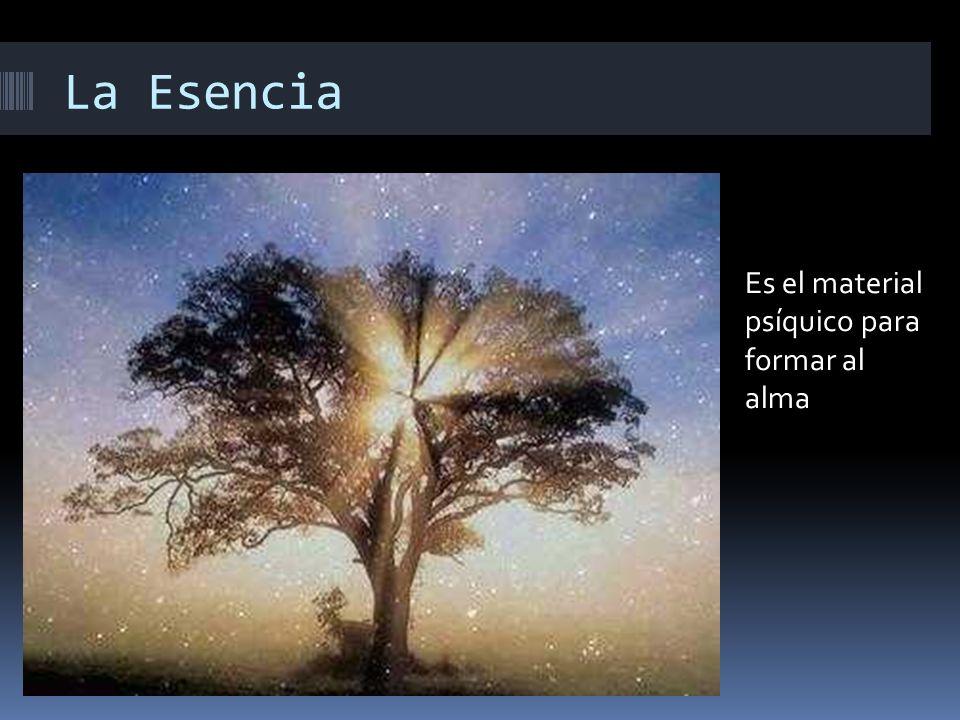 La Esencia Es el material psíquico para formar al alma