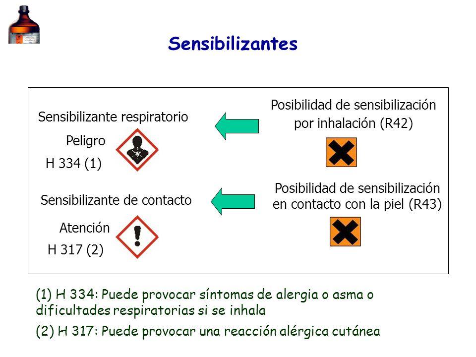 Sensibilizantes Sensibilizante respiratorio Sensibilizante de contacto Atención Peligro Posibilidad de sensibilización por inhalación (R42) Posibilida