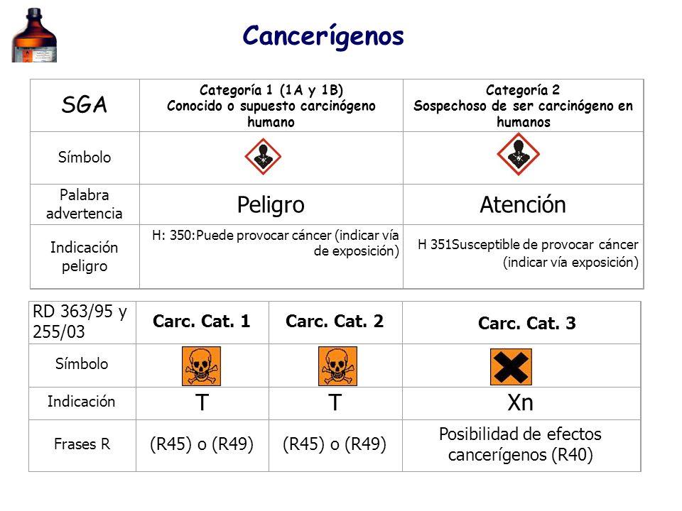SGA Categoría 1 (1A y 1B) Conocido o supuesto carcinógeno humano Categoría 2 Sospechoso de ser carcinógeno en humanos Símbolo Palabra advertencia Peli