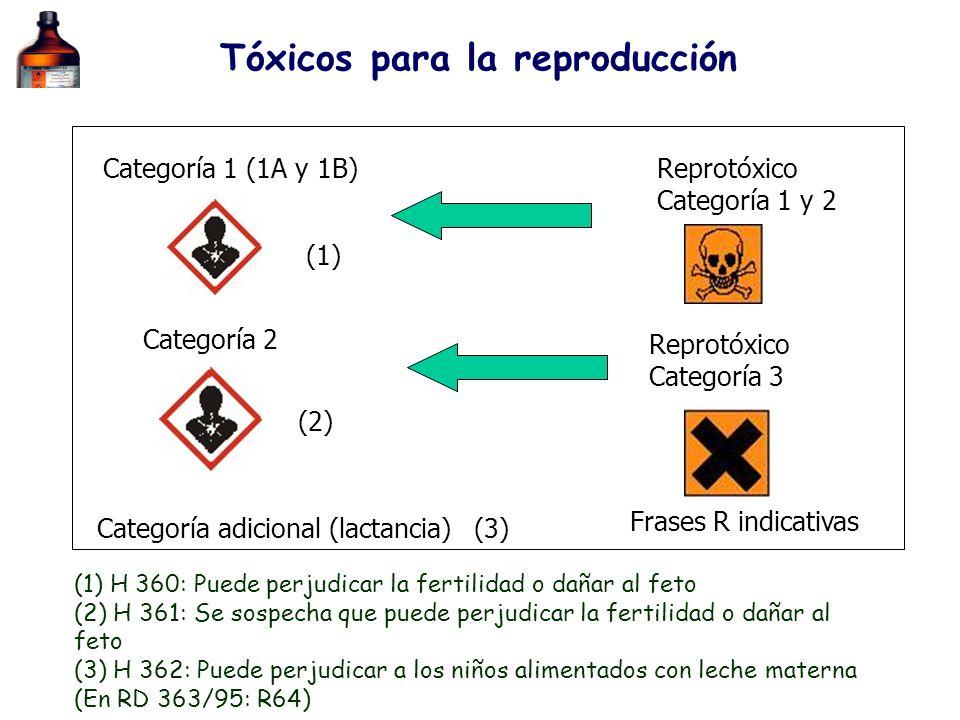 Frases R indicativas Tóxicos para la reproducción Reprotóxico Categoría 1 y 2 Categoría 2 Reprotóxico Categoría 3 Categoría adicional (lactancia) Cate