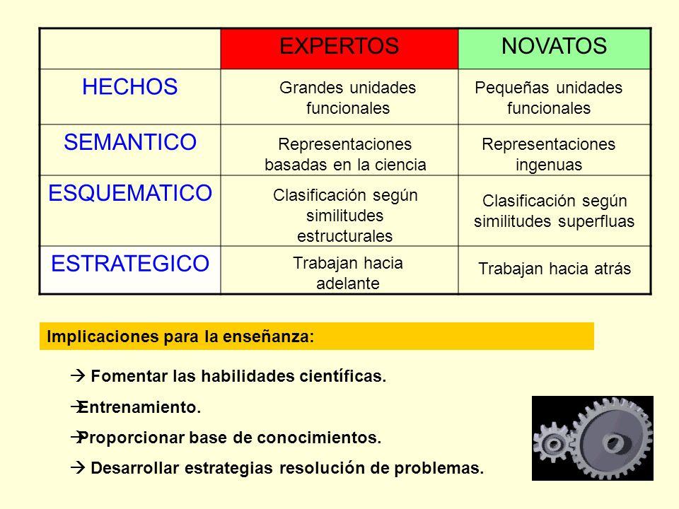 EXPERTOSNOVATOS HECHOS SEMANTICO ESQUEMATICO ESTRATEGICO Grandes unidades funcionales Representaciones basadas en la ciencia Clasificación según simil