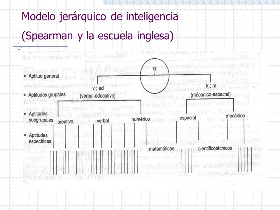 Modelo jerárquico de inteligencia (Spearman y la escuela inglesa)
