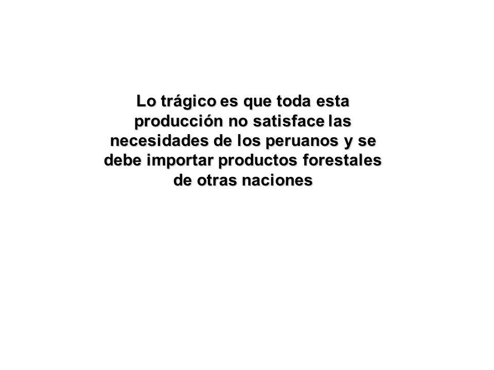 Lo trágico es que toda esta producción no satisface las necesidades de los peruanos y se debe importar productos forestales de otras naciones