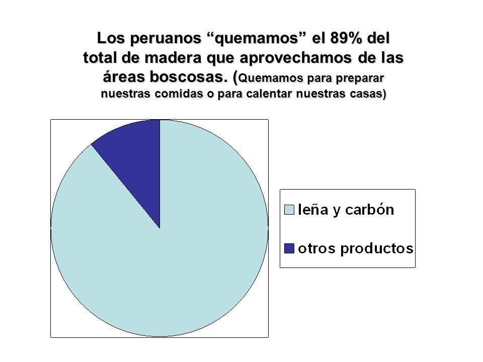 Los peruanos quemamos el 89% del total de madera que aprovechamos de las áreas boscosas.