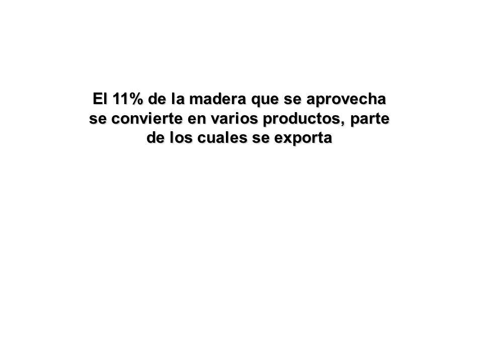 El 11% de la madera que se aprovecha se convierte en varios productos, parte de los cuales se exporta