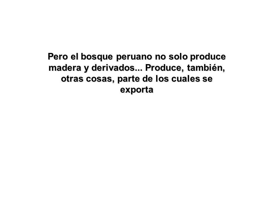 Pero el bosque peruano no solo produce madera y derivados...