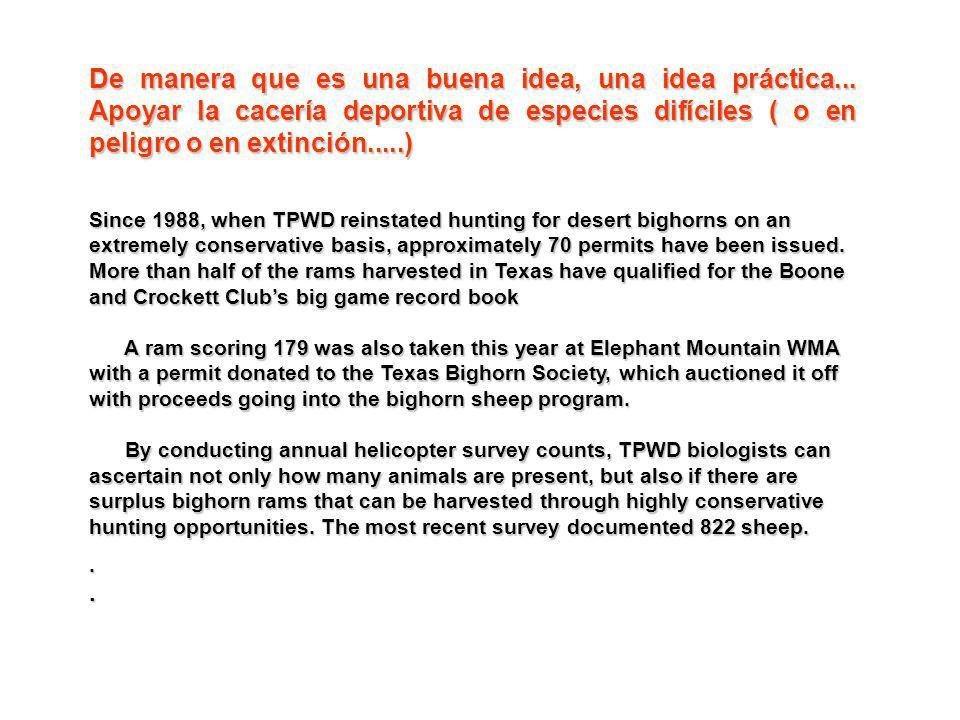 De manera que es una buena idea, una idea práctica... Apoyar la cacería deportiva de especies difíciles ( o en peligro o en extinción.....) Since 1988