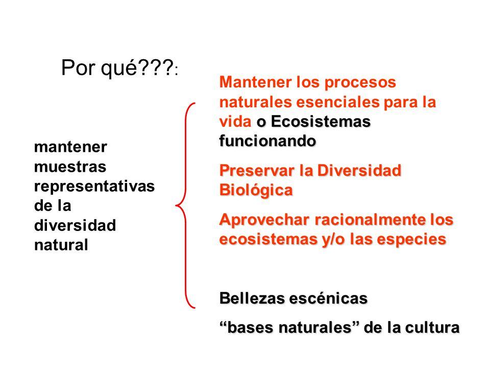 Por qué??? : o Ecosistemas funcionando Mantener los procesos naturales esenciales para la vida o Ecosistemas funcionando Preservar la Diversidad Bioló