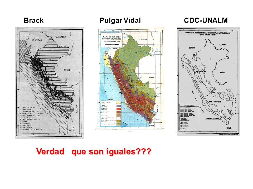 BrackCDC-UNALMPulgar Vidal Verdad que son iguales???
