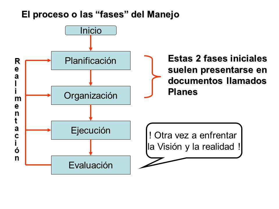 Inicio Organización Planificación Ejecución Evaluación Realimentación ! Otra vez a enfrentar la Visión y la realidad ! Estas 2 fases iniciales suelen