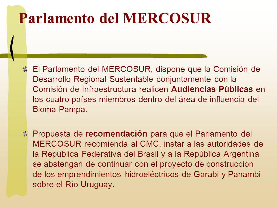 Parlamento del MERCOSUR El Parlamento del MERCOSUR, dispone que la Comisión de Desarrollo Regional Sustentable conjuntamente con la Comisión de Infrae