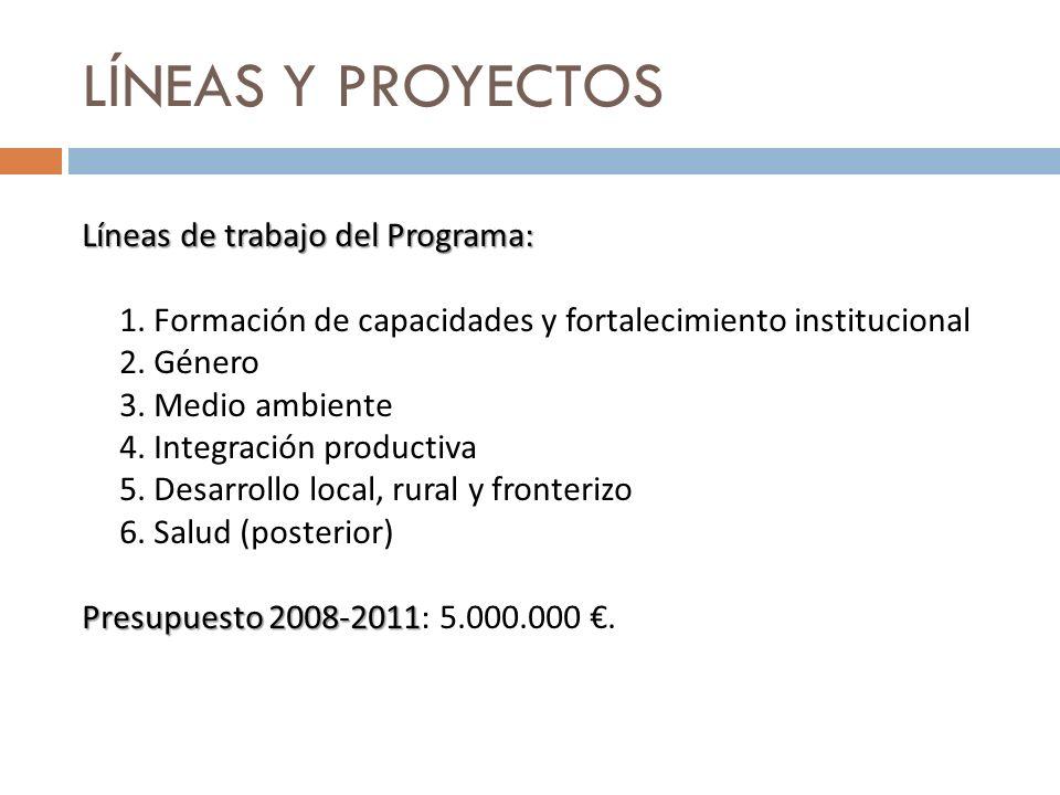 LÍNEAS Y PROYECTOS Líneas de trabajo del Programa: 1. Formación de capacidades y fortalecimiento institucional 2. Género 3. Medio ambiente 4. Integrac