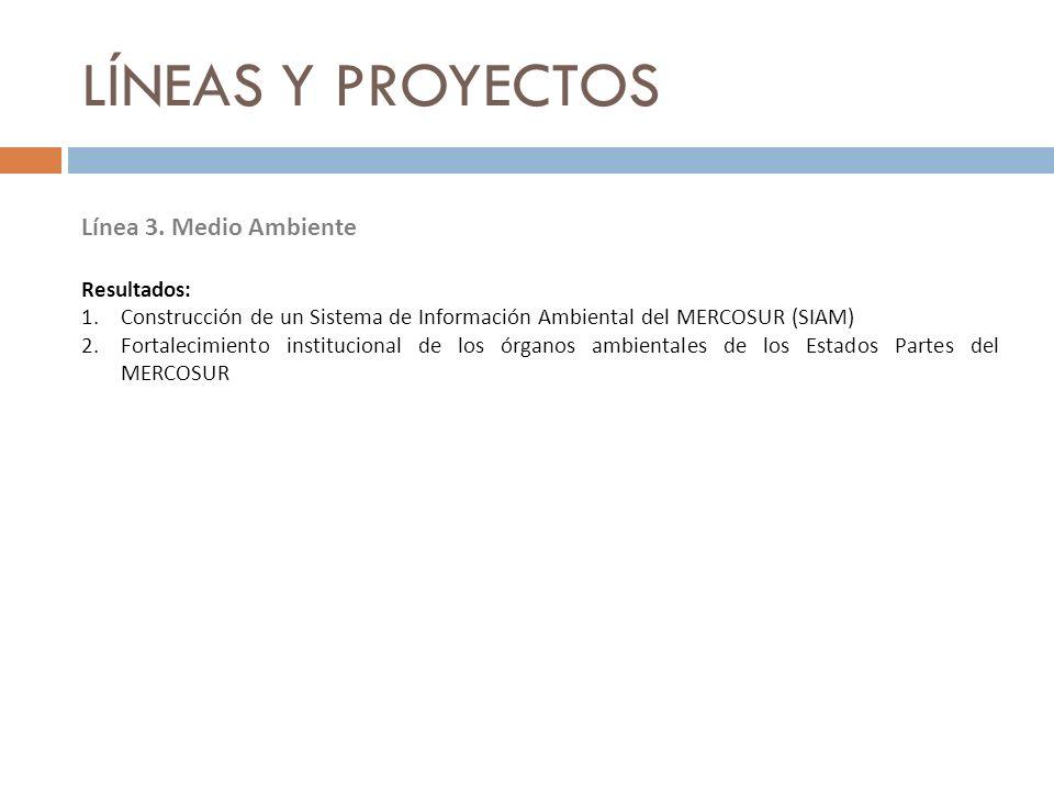 LÍNEAS Y PROYECTOS Línea 3. Medio Ambiente Resultados: 1.Construcción de un Sistema de Información Ambiental del MERCOSUR (SIAM) 2.Fortalecimiento ins