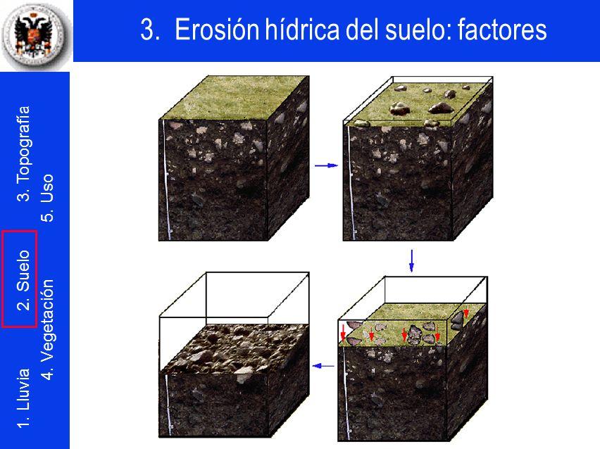 3. Erosión hídrica del suelo: factores 1. Lluvia 2. Suelo 3. Topografía 4. Vegetación 5. Uso