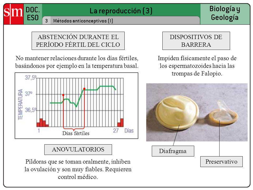 La reproducción (3) DOC. ESO Biología y Geología 3Métodos anticonceptivos (I) ABSTENCIÓN DURANTE EL PERÍODO FÉRTIL DEL CICLO ANOVULATORIOS DISPOSITIVO