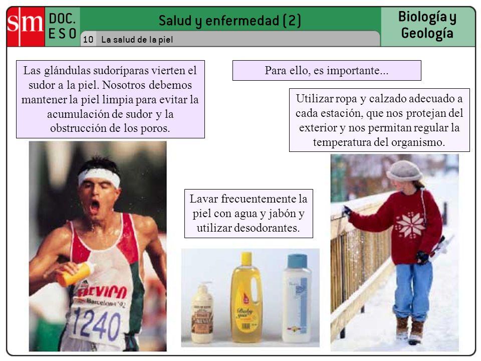 Salud y enfermedad (2) DOC. E S O Biología y Geología 10 Biología y Geología La salud de la piel Las glándulas sudoríparas vierten el sudor a la piel.