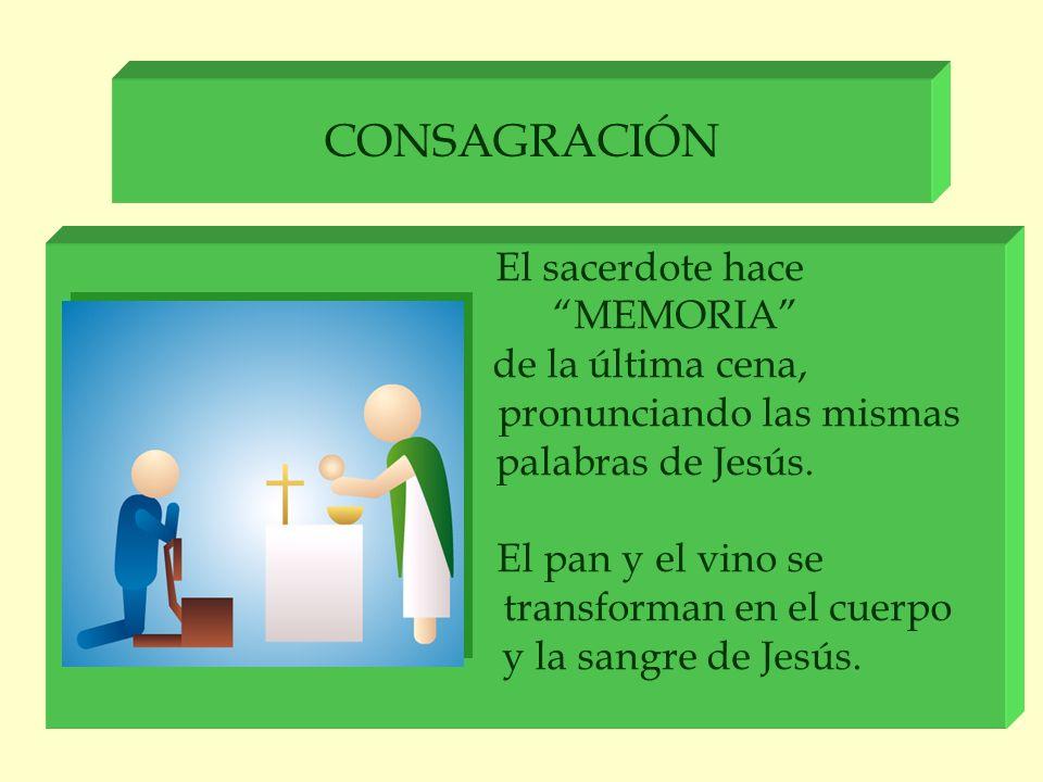 CONSAGRACIÓN El sacerdote hace MEMORIA de la última cena, pronunciando las mismas palabras de Jesús. El pan y el vino se transforman en el cuerpo y la
