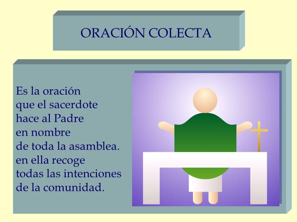 ORACIÓN COLECTA Es la oración que el sacerdote hace al Padre en nombre de toda la asamblea. en ella recoge todas las intenciones de la comunidad.