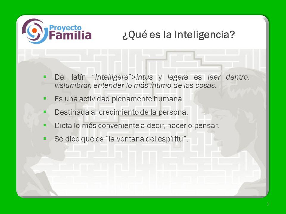 4 Características de la Inteligencia Lógica Tenemos la capacidad de darnos cuenta de nuestros errores.