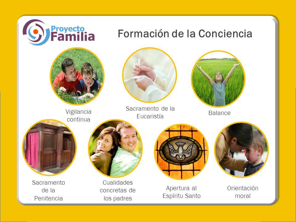 Vigilancia continua Sacramento de la Penitencia Balance Orientación moral Sacramento de la Eucaristía Cualidades concretas de los padres Apertura al E