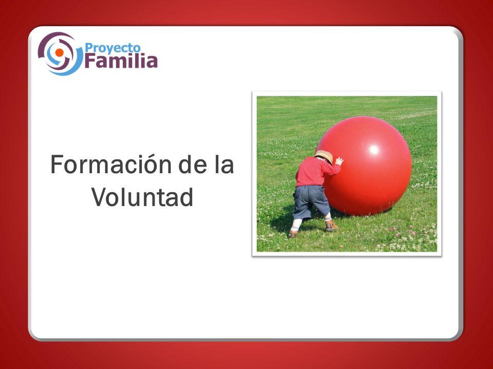Formación de la Voluntad