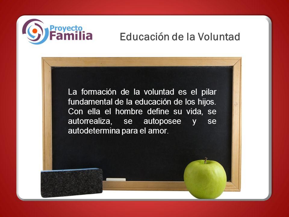 La formación de la voluntad es el pilar fundamental de la educación de los hijos. Con ella el hombre define su vida, se autorrealiza, se autoposee y s