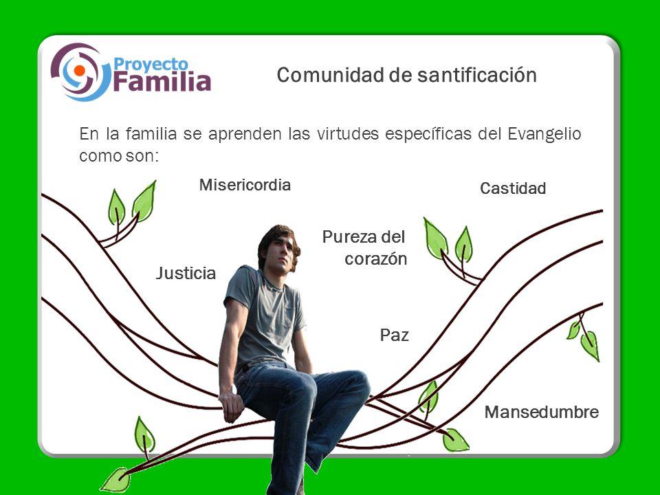 Comunidad de santificación En la familia se aprenden las virtudes específicas del Evangelio como son: Justicia Mansedumbre Paz Castidad Misericordia P