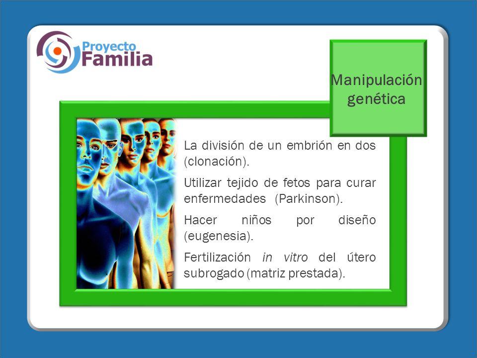 La división de un embrión en dos (clonación). Utilizar tejido de fetos para curar enfermedades (Parkinson). Hacer niños por diseño (eugenesia). Fertil