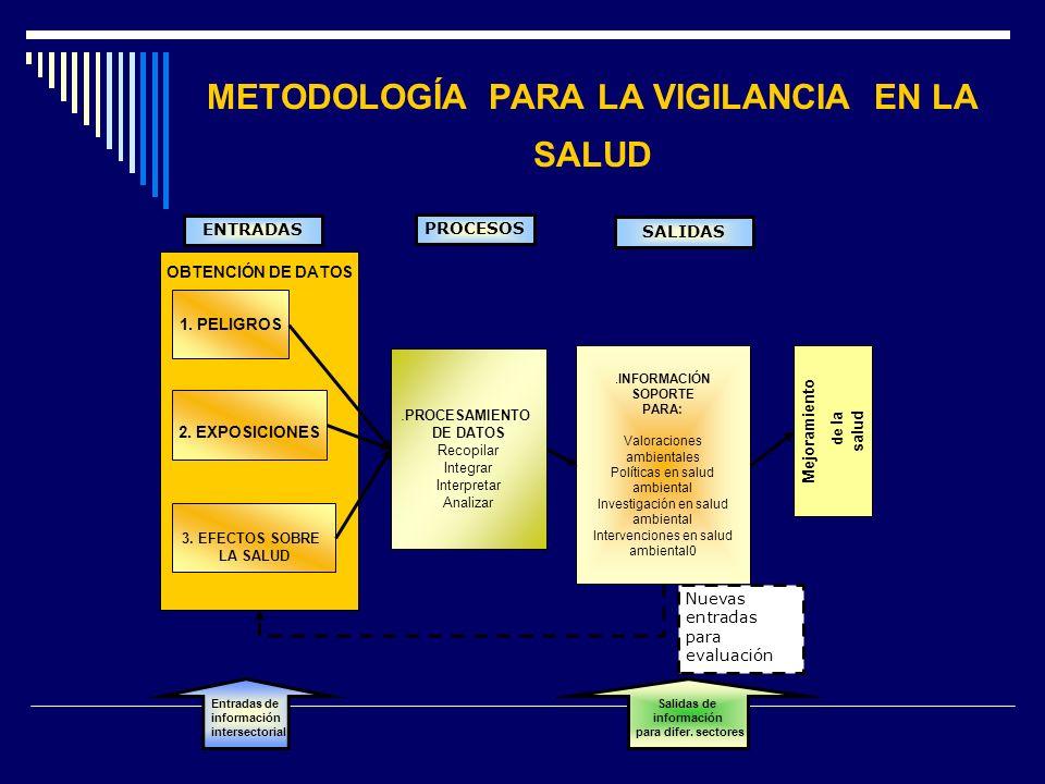 METODOLOGÍA PARA LA VIGILANCIA EN LA SALUD OBTENCIÓN DE DATOS 1. PELIGROS 2. EXPOSICIONES 3. EFECTOS SOBRE LA SALUD. PROCESAMIENTO DE DATOS Recopilar